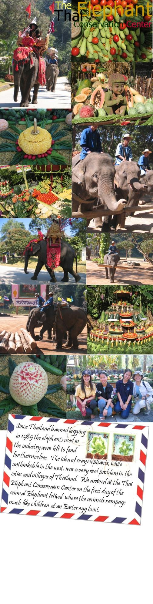 A photo collage from the Thai Elephant Conservation Center
