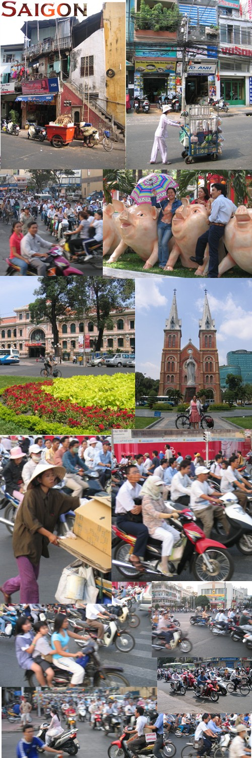 A photo collage from Saigon, Vietnam also known as Ho Chi Minh, Vietnam.  Images include haphazard buildings,  a vendor pushing a cart, girls posing with giant pigs, the chaotic motorbike traffic, the spectacular Catholic Cathedral, and more images of the traffic.